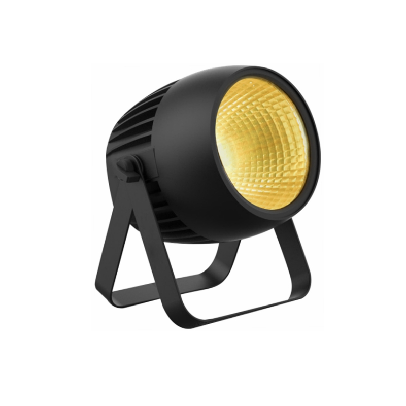 IP65 80W COB WW/CW LED PAR LIGHT