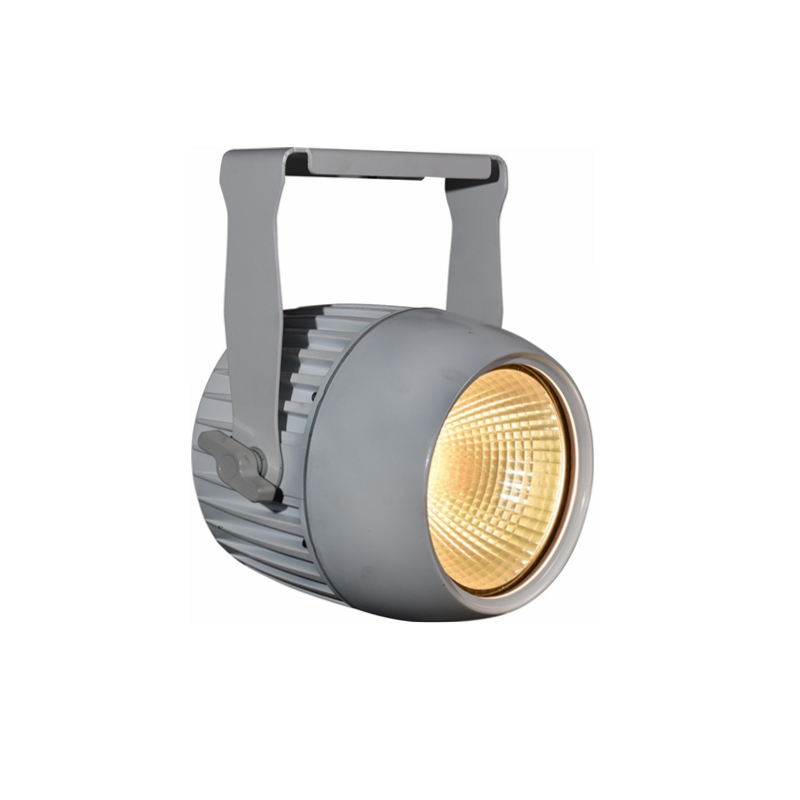 80W COB LED SPOT LIGHT